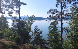Máchovo jezero - Česká republika